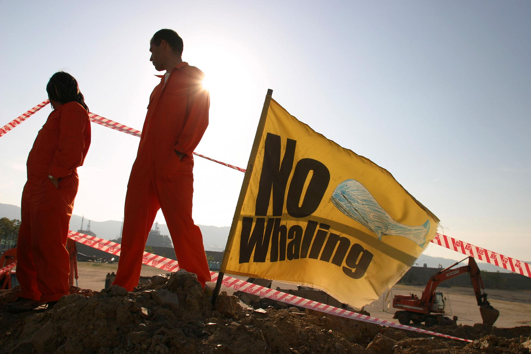 Anti-whaling protest in Korea, by Scotland Greenpeace photographer