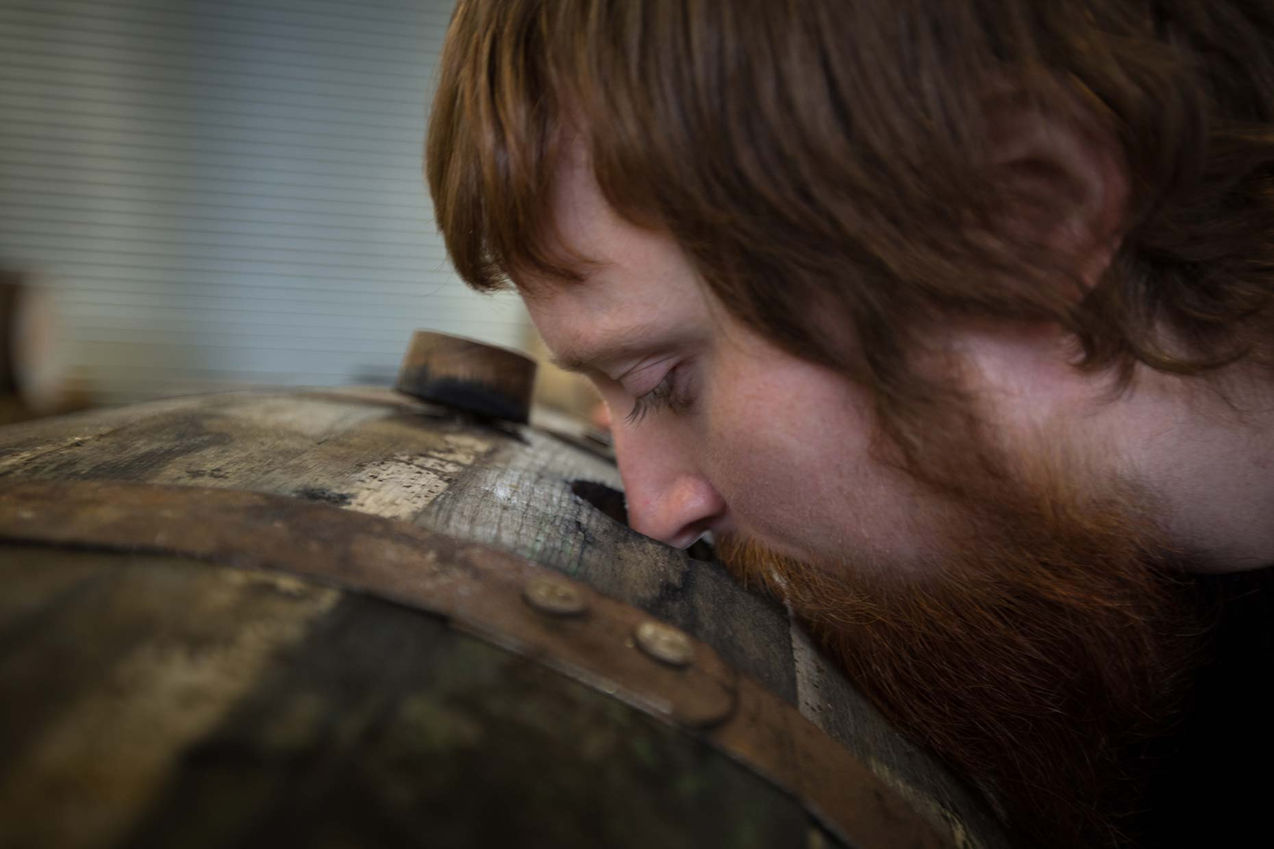 Nosing a cask of Scottish single malt whisky, Scotland