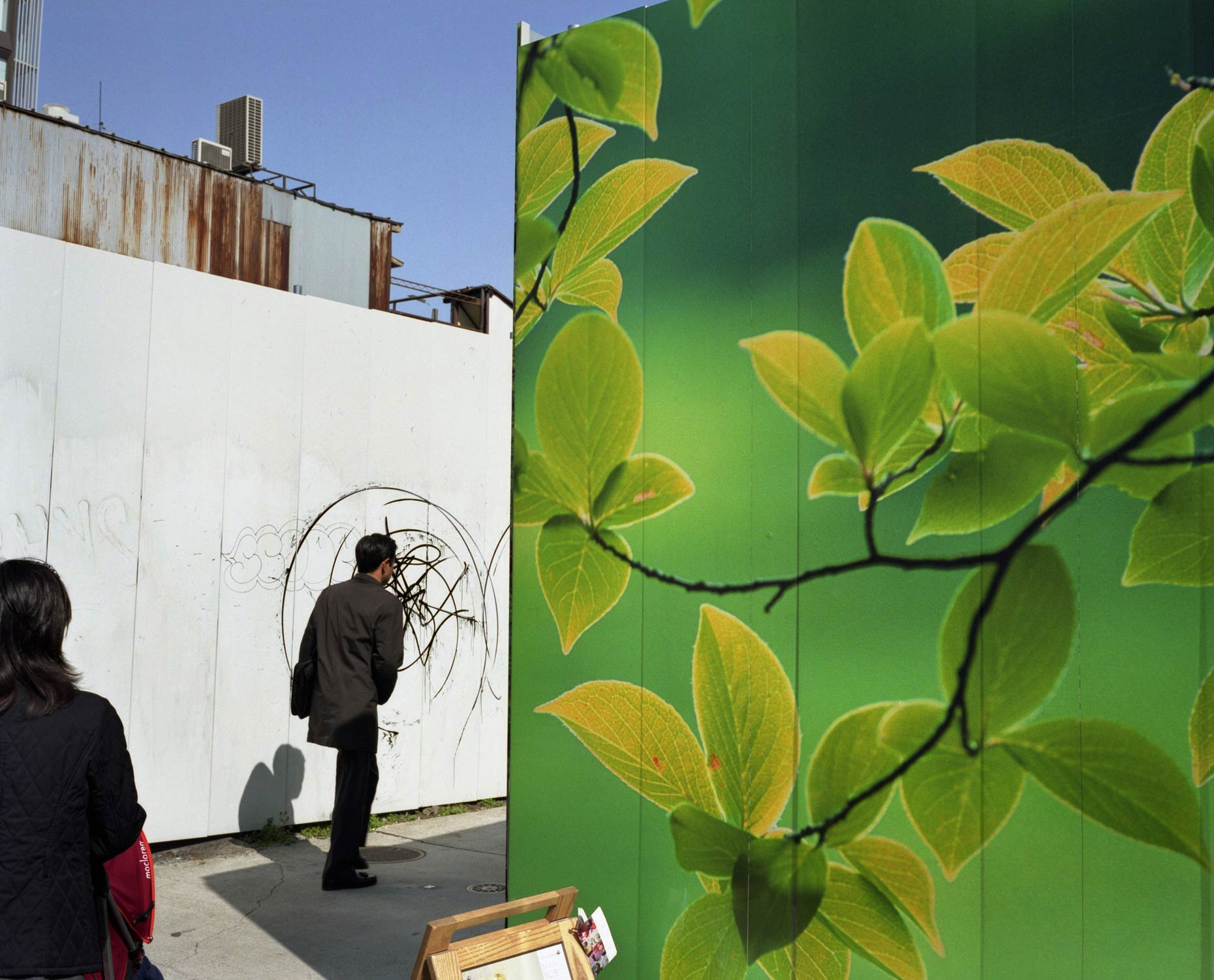 Billboards depicting scenes of nature, Tokyo, Japan.