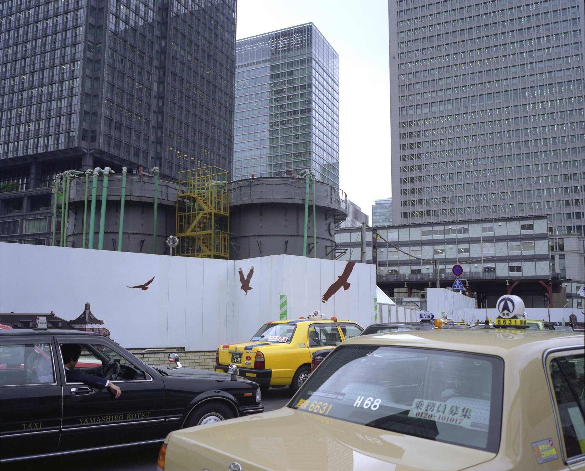 Billboards depicting birds and scenes of nature, Tokyo, Japan.